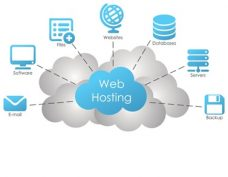 Insight to Web Hosting for Beginners