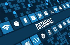 business growth Database